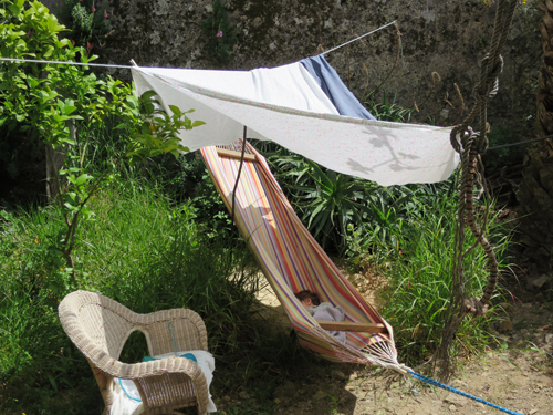 a hammock ....and the garden that comes with it