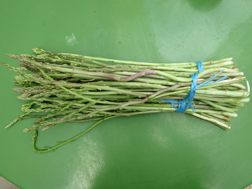 wild asparagus ....and for being a bouquet for the 30 minutes before being cooked