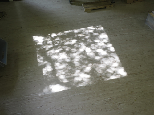 Trees and shadows ....the sun puts pretty prints on my studio floor lately